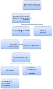 Drug Testing Flow Chart Patient Flow Chart During The Study Dst Drug