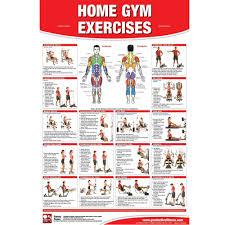 Home Gym Exercises Chart