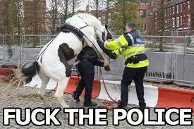 Funny-Horse-Memes-08.jpg via Relatably.com