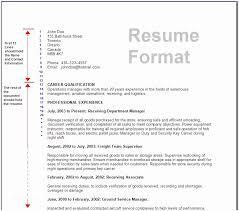 Standard Format For Resume Standard Format Resume Standard Resume Format Ambfaizelismail