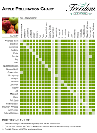 Fruit Tree Identification Chart Pollinating Apple Trees Viagers Info