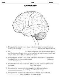 Intro to Science   Engineering  STEM Critical Thinking Challenges Pinterest