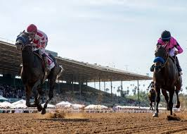 california considers the unthinkable canceling horse racing at santa anita park