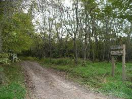 Panoramio - Photo of Ivan Boyd Nature Trail | Nature trail, Trail, Scenery