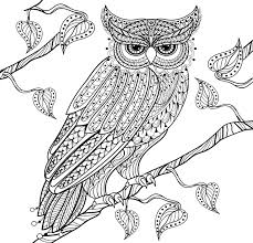 amazon owl town coloring book 31 stress relieving designs studio series 9781441321213 peter pauper press books