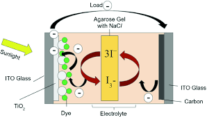 Dye-Sensitised Solar Cells Using Flora Extracts   SpringerLink