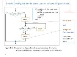 Control Structure Flow Chart Programming Logic And Design Seventh Edition Ppt Video
