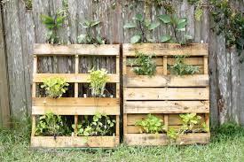 own vertical pallet garden