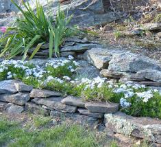 Design A Rock How To Design A Rock Garden Landscaping With Rocks And