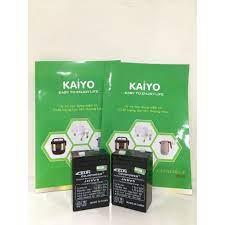 Ắc quy kaiyo 6V / 5Ah - Chuyên dùng cho Đèn sạc, Quạt sạc , xe đồ chơi trẻ  em - Hàng loại 1
