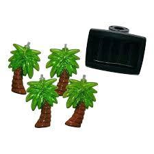 patio palm tree palm tree outdoor