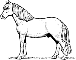 1866x1486 horse coloring page