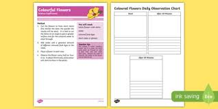 Science Experiment Chart Colourful Flowers Science Experiment Australia