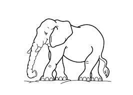 Elephant Coloring Sheet Zupa Miljevcicom