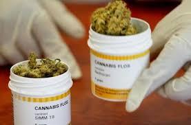 Правда ли, что марихуана помогает при психических расстройствах? -  Hi-News.ru