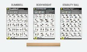 Exercise Posters Set Of 3 Workout Chart Laminated Strength