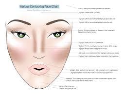 makeup contour and highlight