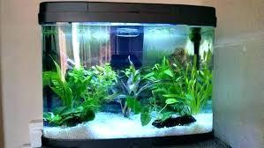 office desk aquarium. Office Desk Fish Tank Desks Fresh Aquarium Furniture Row Of America Near Me. Acrylic Water Free Isolation Box U