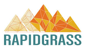 Image result for rapidgrass band