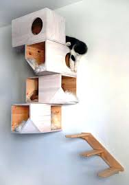 cat shelves image of wall mounted cat shelves cat wall shelves diy cat shelves cat shelves
