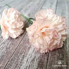 Paper Flower Video Carnation Crepe Paper Flowers Diy Video Carte Fini