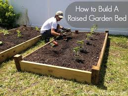 Raised Garden Bed Design Ideas Raised Garden Bed Diy So Easy We Should All Be Growing Our Own Veggies