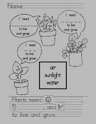 Plants | Standard Based Learning Activities