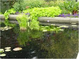 Stunning Design Backyard Designs Ideas Backyard Ideas  Crafts HomeSmall Backyard Landscaping Plans
