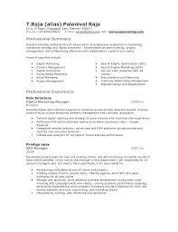 Ppc Engineer Resume Sample