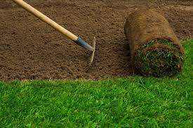 We will always use professional grade equipment that'll leave your lawn looking beautiful. New Sod Lawn Care Naples Fl