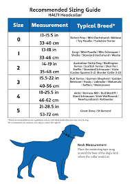 German Shepherd Puppy Online Charts Collection
