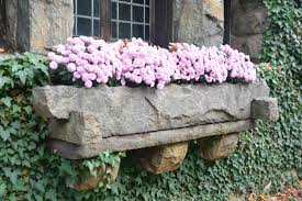 wall mounted stone window planter box with beautiful flower plants and wall with plants growing