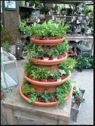 terracotta saucers garden center displays garden centre flower displays indoor plants
