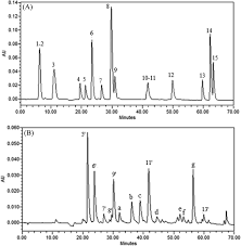 Identification and Quantification of Phenolic Components of Rosa ...