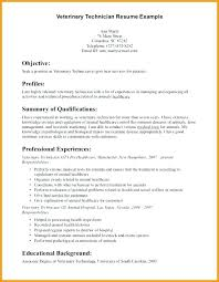 Technical Resume Tips Customer Service Consultant Resume Top 8 ...