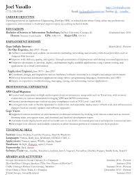 Joel Vasallo's Resume