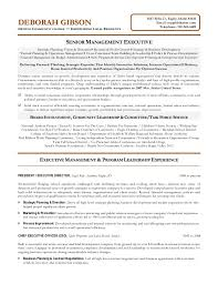 Executive Director Resume 19 Non Profit Sainde Org