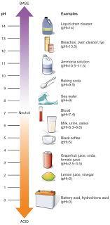 Alkaline And Acidic Food Chart Pdf Ph Wikipedia