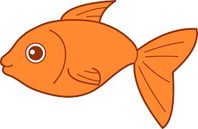 gold fish clip art. Perfect Clip Goldfish Clipart Inside Gold Fish Clip Art O