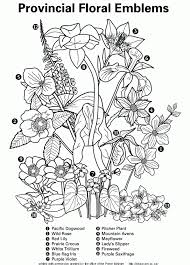 Small Picture Master Coloring Pages