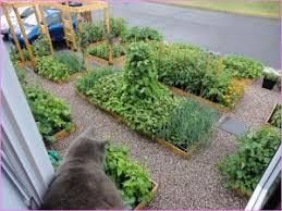 outdoor herb garden. DIY Herb Garden Outdoor Grow Outdoors