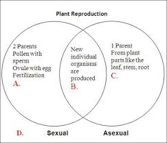 Compare The Venn Diagram Of Sexual Reproduction And Asexual