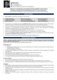 Business Development Executive Resume Sarahepps Com