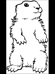 Dessin De Coloriage Marmotte Imprimer Cp17687
