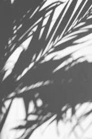 Iphone Cute Aesthetic Wallpapers Black ...