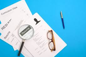 Best It Resume Format How To Choose The Best Resume Format