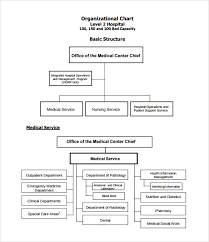Clinic Organizational Chart Template Sample Hospital Organizational Chart 9 Documents In Pdf