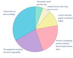 Cbt Pie Chart 58 Inquisitive Responsibility Pie Chart