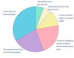 58 Inquisitive Responsibility Pie Chart