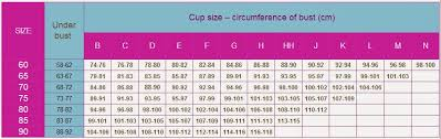 Bra Size Chart Two Cakes On A Plate